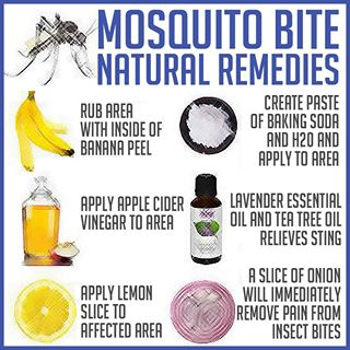 Natural Remedies for Mosquito Bites | Family Chiropractic
