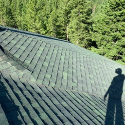 Standing on top of a new roof with green asphalt shingles