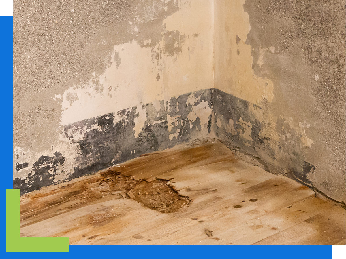 A water-damaged floor and wall.