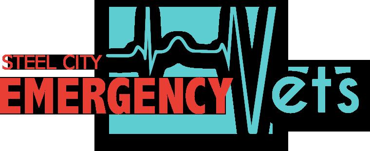 Christmas City Vet.Steel City Emergency Vets Emergency Vet Medicine Near You