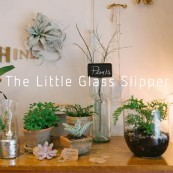 Lifestyle PR-PR Firm in New York-The Little Glass Slipper
