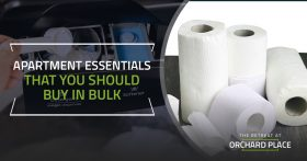 Apartment Essentials That You Should Buy In Bulk