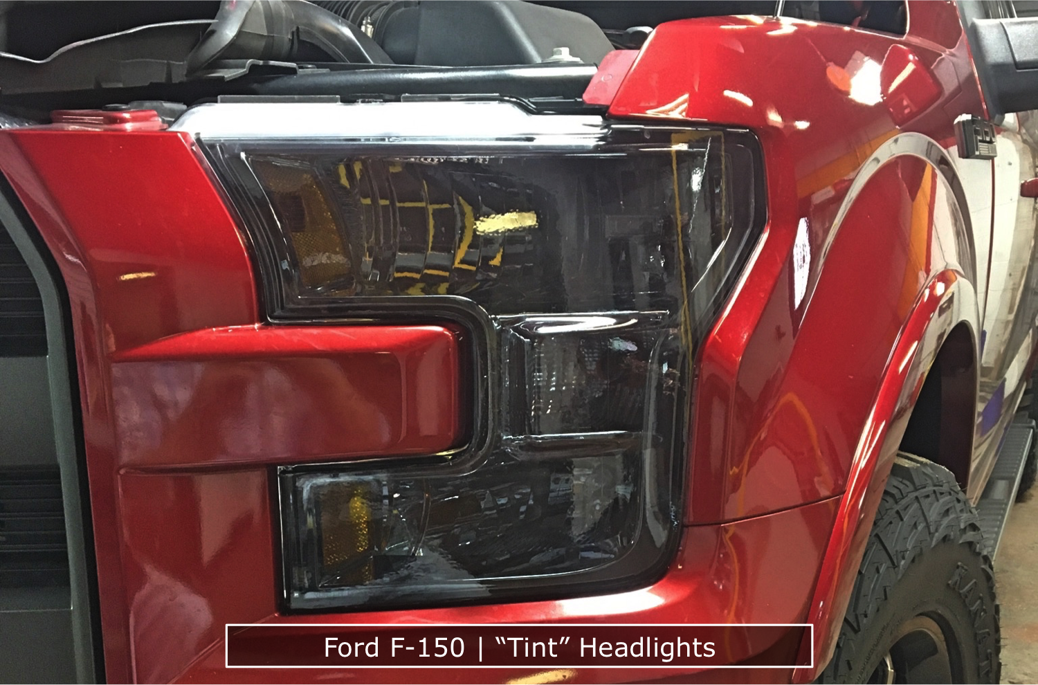 "F-150 ""Tint"" Headlights"