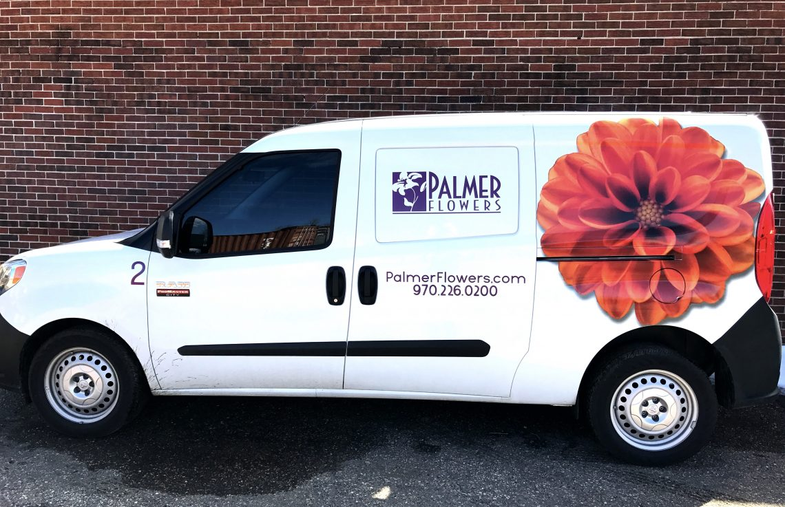 Promaster City Vehicle Wrap