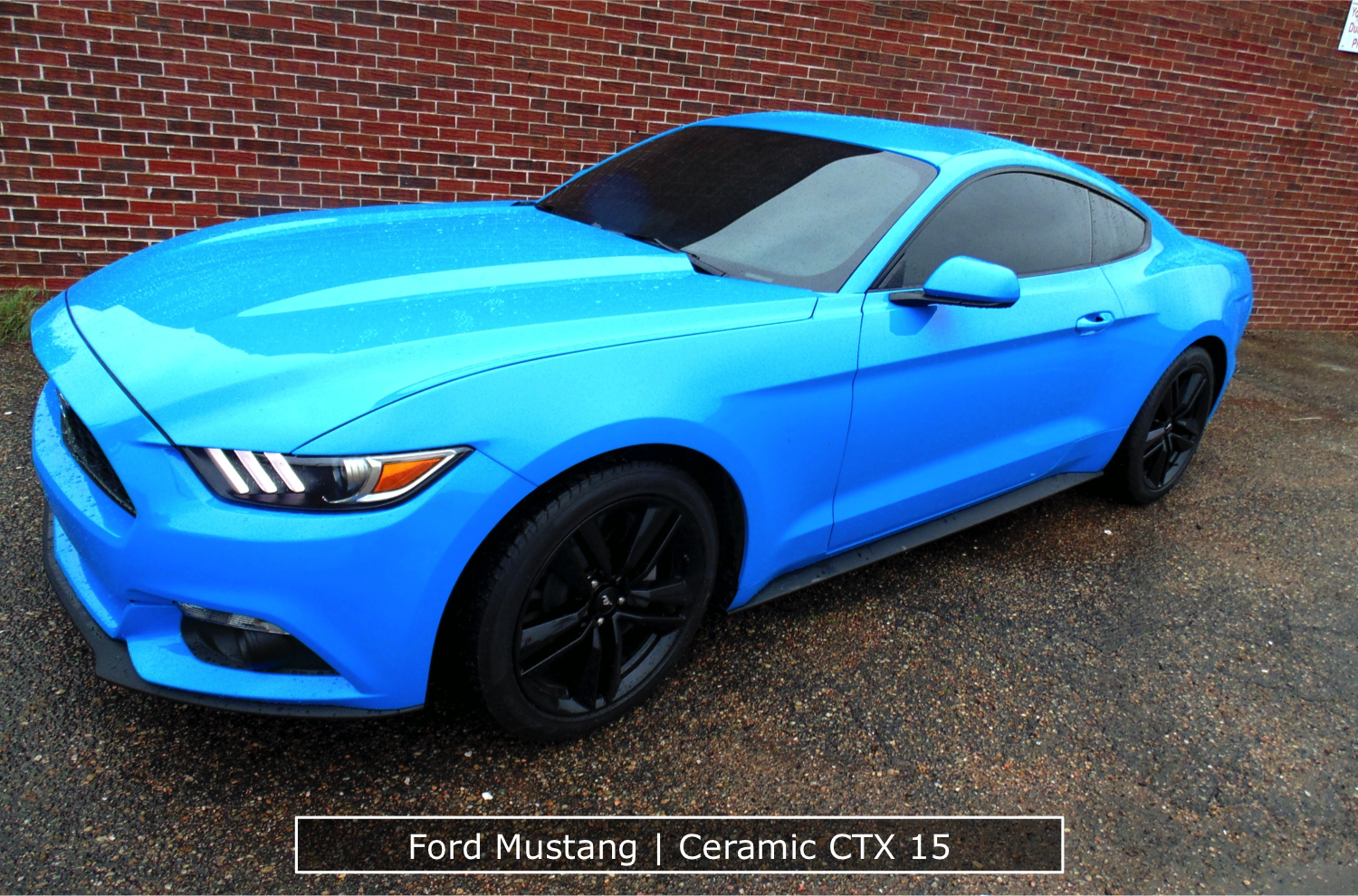 Ford Mustang Window Tint