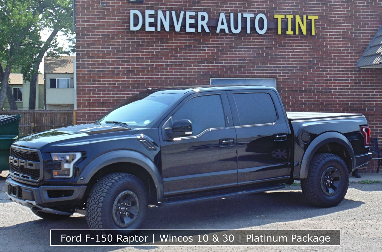 Raptor Clear Bra and Window Tint