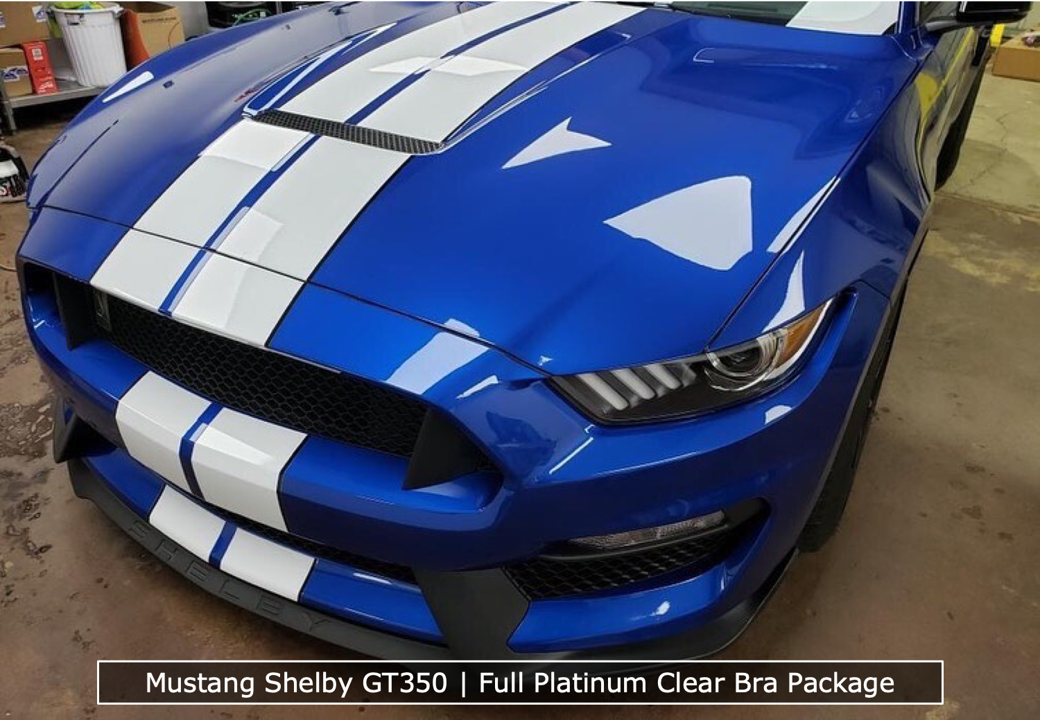 Mustang Shelby GT350 Full Platinum Clear Bra Package