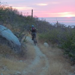 Baja Adventure Tours Teresa's Tours of Baja
