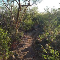 Teresa's Tours of Baja Biking Tours California