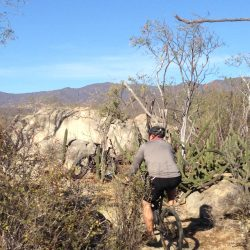 biking tours California Teresa's Tours of Baja