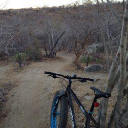 Mountain bikes Teresa's Tours of Baja