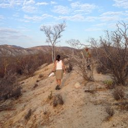 Teresa's Tours of Baja Guided Hiking Trips