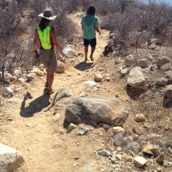 Teresa's Tours of Baja Hiking