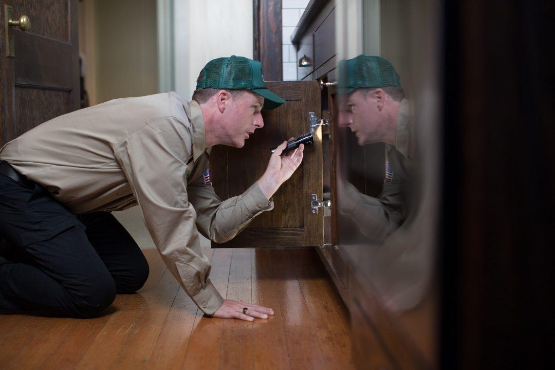 termite inspector fumigation