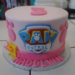 Birthday cakes in Arlington texas, birthday cakes in fort worth texas, affordable cakes in Arlington, affordable cakes in dallas, birthday cakes in dallas, birthday cakes in southlake, birthday cakes in irving, birthday cakes north texas, paw patrol birthday cakes, paw patrol