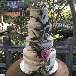 naked cakes, buttercream wedding cakes, custom cakes arlington