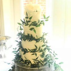 wedding cakes arlington | plano wedding bakery | frisco cakes bakery | greenery cakes | southlake wedding bakery