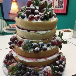 naked wedding cakes | wedding cakes with fruit | summer theme wedding cakes | strawberry wedding cakes | fort worth wedding bakery | vegan cakes