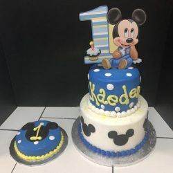 Mickey Mouse 1st Birthday Arlington Dallas Fort Worth Mansfield Southlake