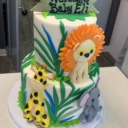 Small baby shower cakes, custom baby shower cakes, dallas baby showers, fort worth baby showers