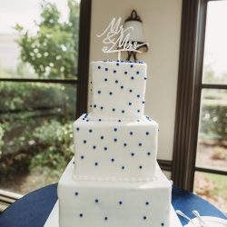 white wedding cakes, blue pearl wedding cakes, plano wedding bakery, frisco wedding cakes, southlake wedding cakes
