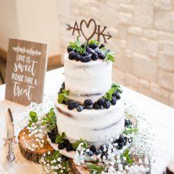 naked wedding cake, delicious cakes dallas, Dallas weddings, arlington wedding cakes, fort worth bakery