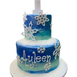 frozen birthday cakes, dallas birthday cakes, elsa birthday cakes, frozen cakes, fort worth birthday cakes, local delivery dallas, fort worth delivery