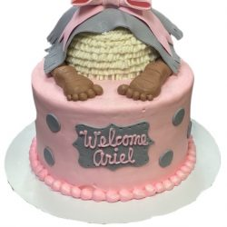 Big baby shower cakes, light pink baby shower cakes, girl baby shower cakes, chevron in grey, arlington texas bakery
