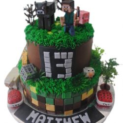 Minecraft kids cake dallas fort worth arlington southlake plano frisco