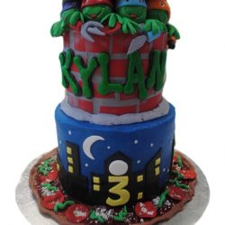 birthday cake, best bakery dallas, tiered cake, ninja turtles, pizza cakes, cool cakes, kids cakes