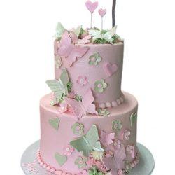 butterflies birthday cake, 1st birthday cakes, dallas best bakery, arlington bakery