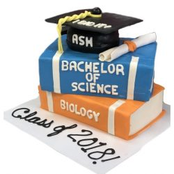 Graduation Cakes in dallas, fort worth bakery, custom cakes in arlington, college graduation cakes