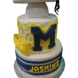 Michigan Graduation Cake, Custom Graduation Cakes, Dallas Bakery