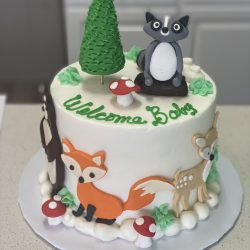 Woodland Creatures Baby Shower Cake, Dallas Bakery, Fort Worth Cakes