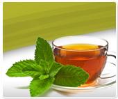 fp-mint-tea-new