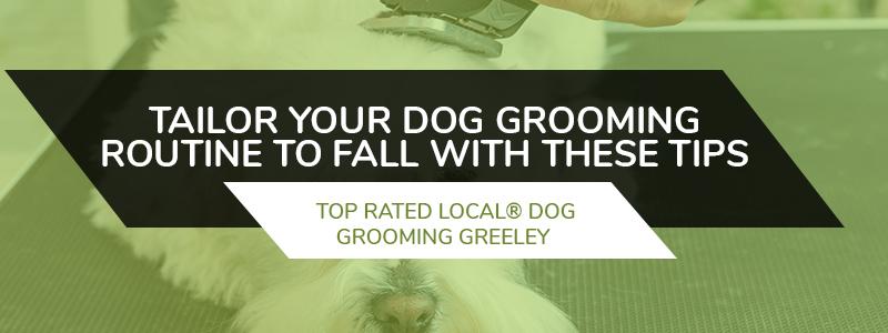 Dog Grooming Greeley Fall Dog Grooming Tips Part 1