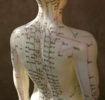 acupuncture 3