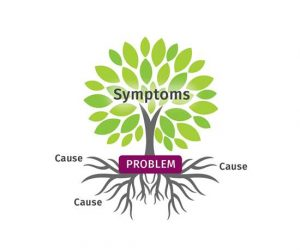 Naturopathic Doctor-Root Cause