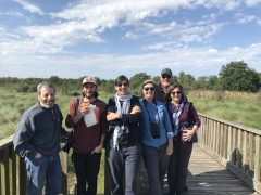 Group Tours New Orleans