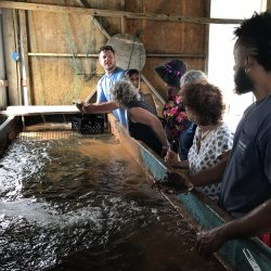 water tour