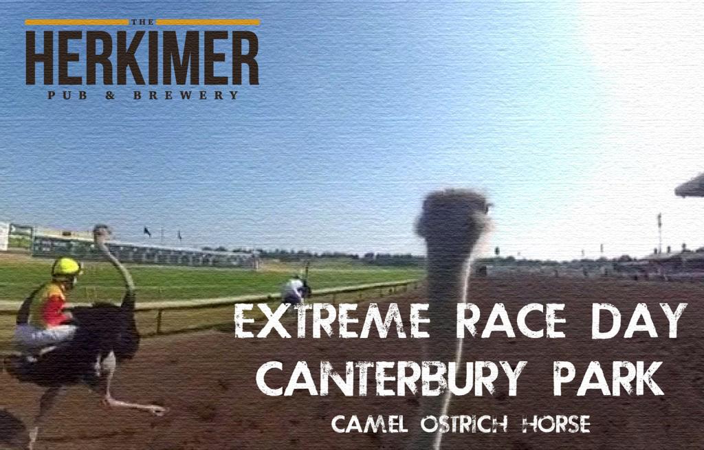 extreme-race-promo-1024x655