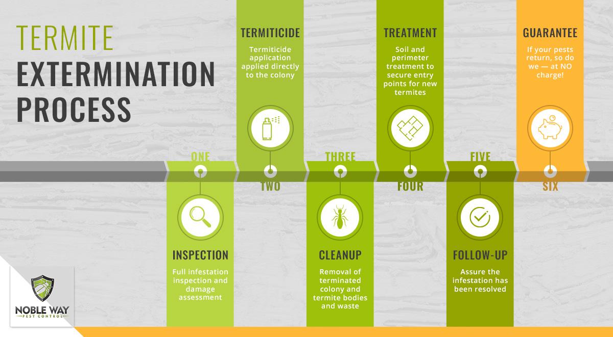 termite extermination process infographic