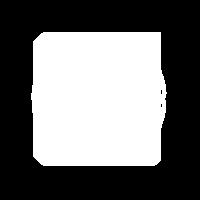 custom pizza icon