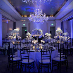 A wedding reception with deep purple lighting and large floral centerpieces - The Rented Event