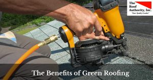 How green roofing can help you