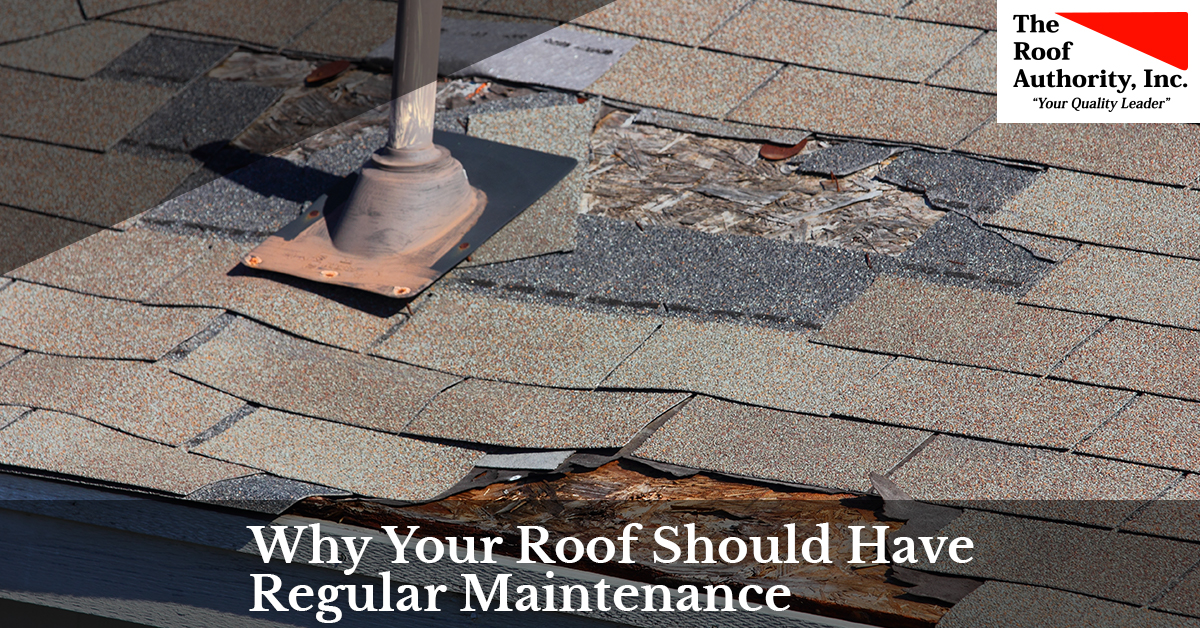 Why your roof needs regular maintenance