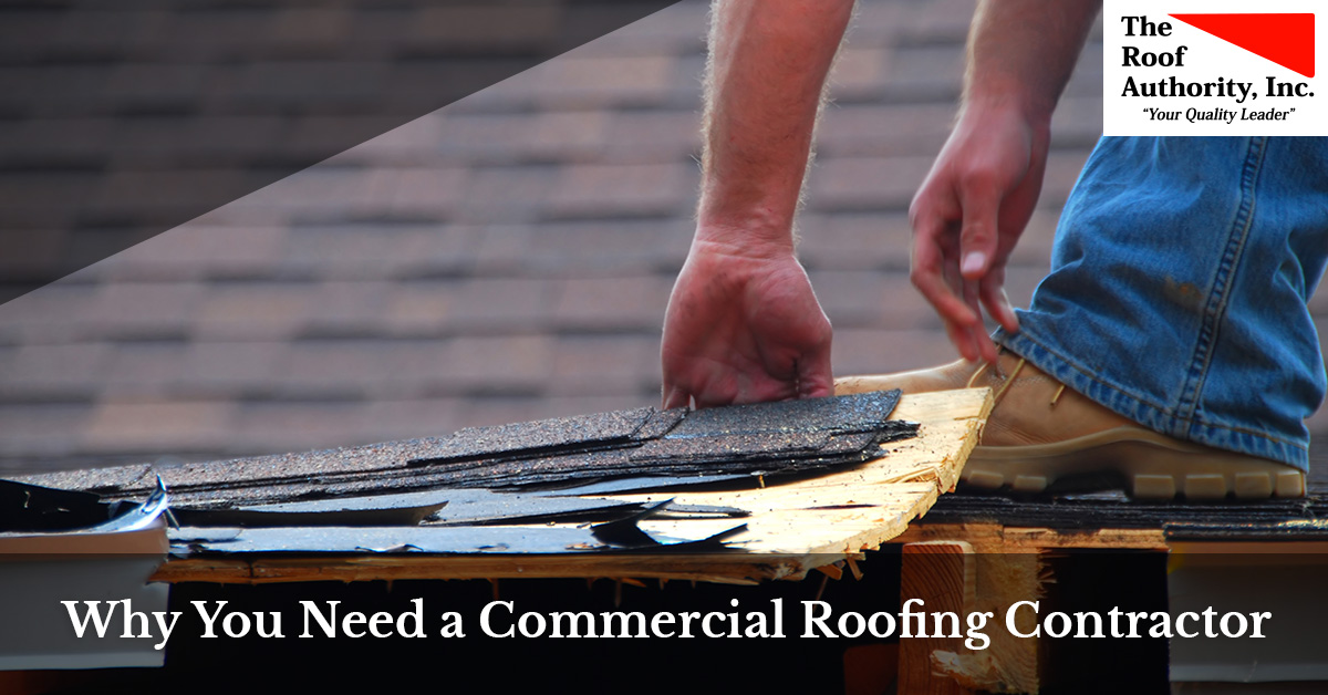Reasons you need a commercial roofing contractor