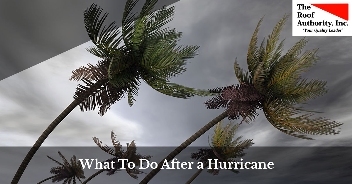 What you should do after a hurricane