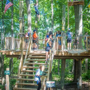 Team Building High Ropes Course in West Bloomfield