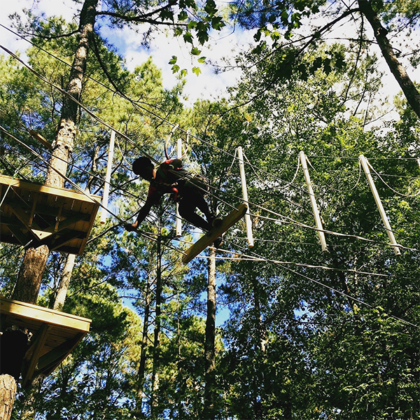 The Best Aerial Adventure Park in Raleigh